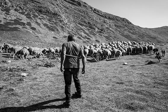 emuse incontra Emiliano Cribari: fotografo, poeta, camminatore